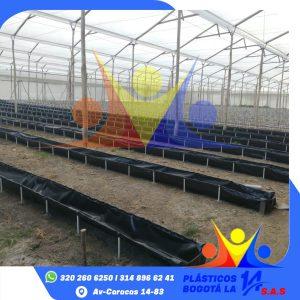 Plásticos para Invernadero